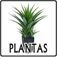 Las mejores plantas, flores y enredaderas para exterior