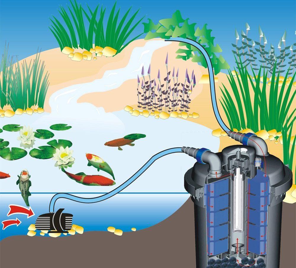 filtro para estanques