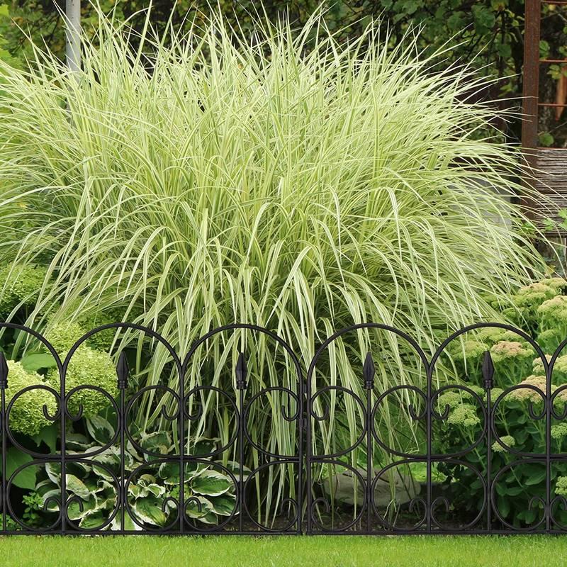 bordillos de jardin